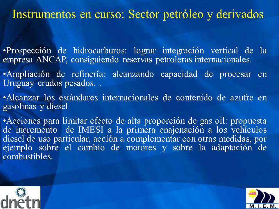 Instrumentos en curso: Sector petróleo y derivados