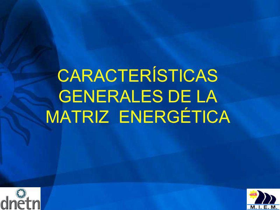 CARACTERÍSTICAS GENERALES DE LA MATRIZ ENERGÉTICA