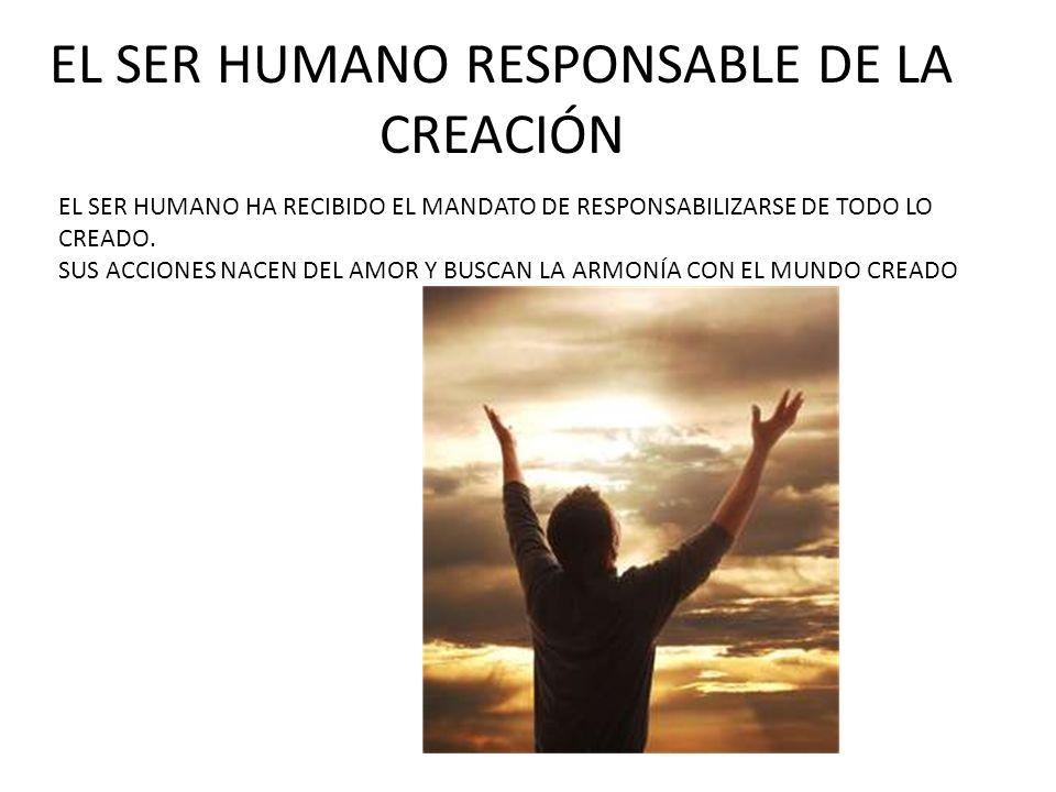EL SER HUMANO RESPONSABLE DE LA CREACIÓN