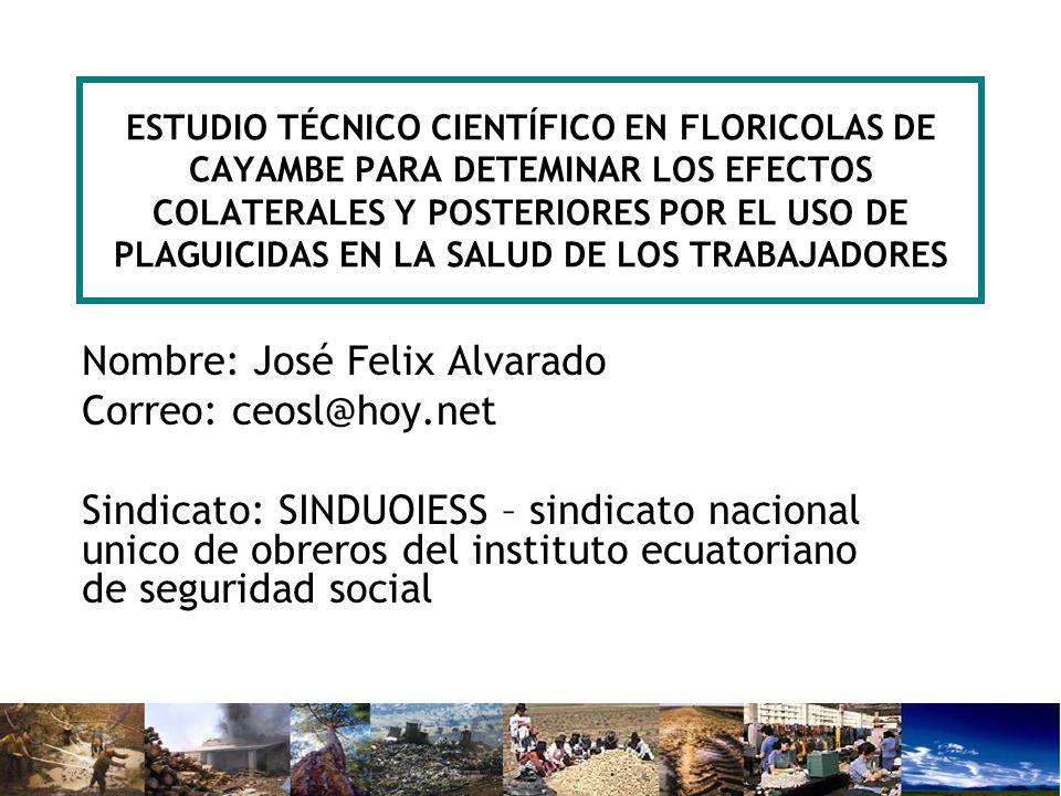 Nombre: José Felix Alvarado Correo: ceosl@hoy.net