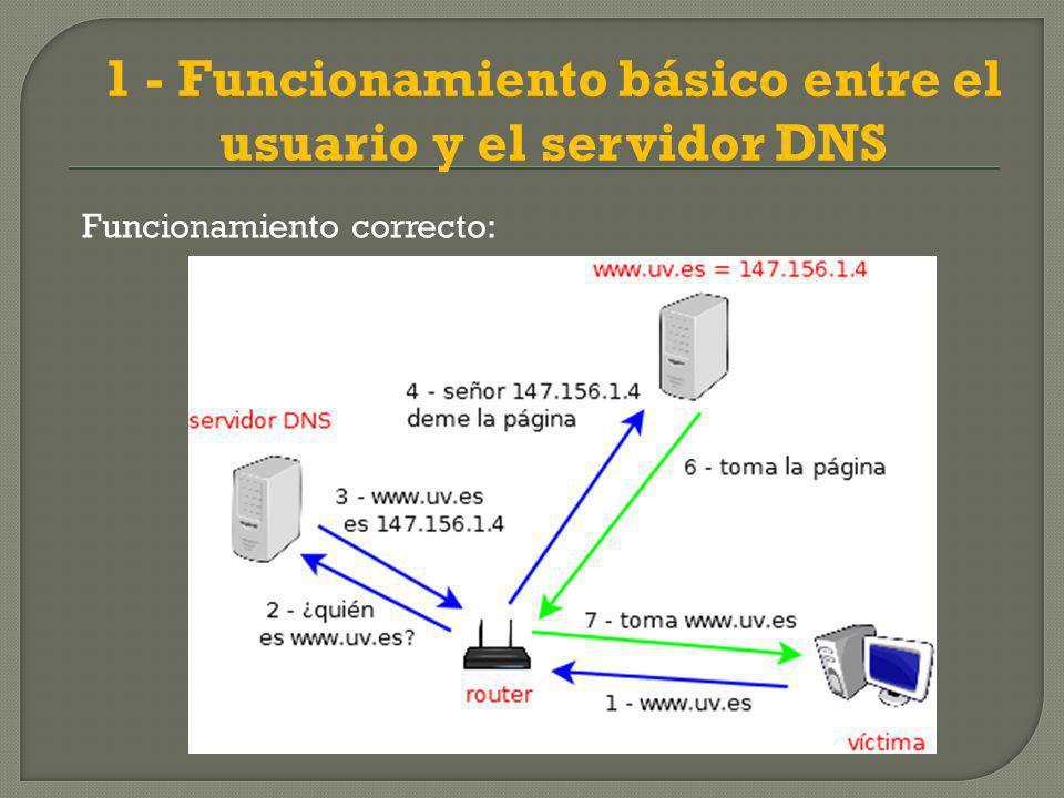 1 - Funcionamiento básico entre el usuario y el servidor DNS
