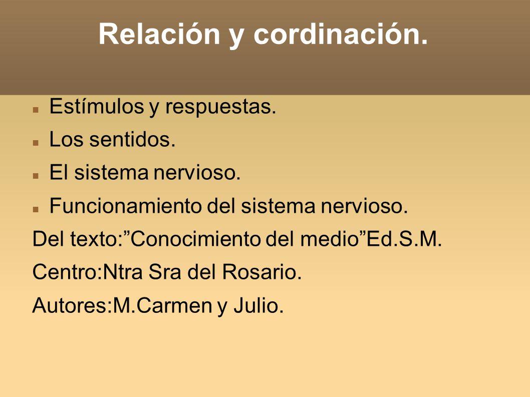 Relación y cordinación.