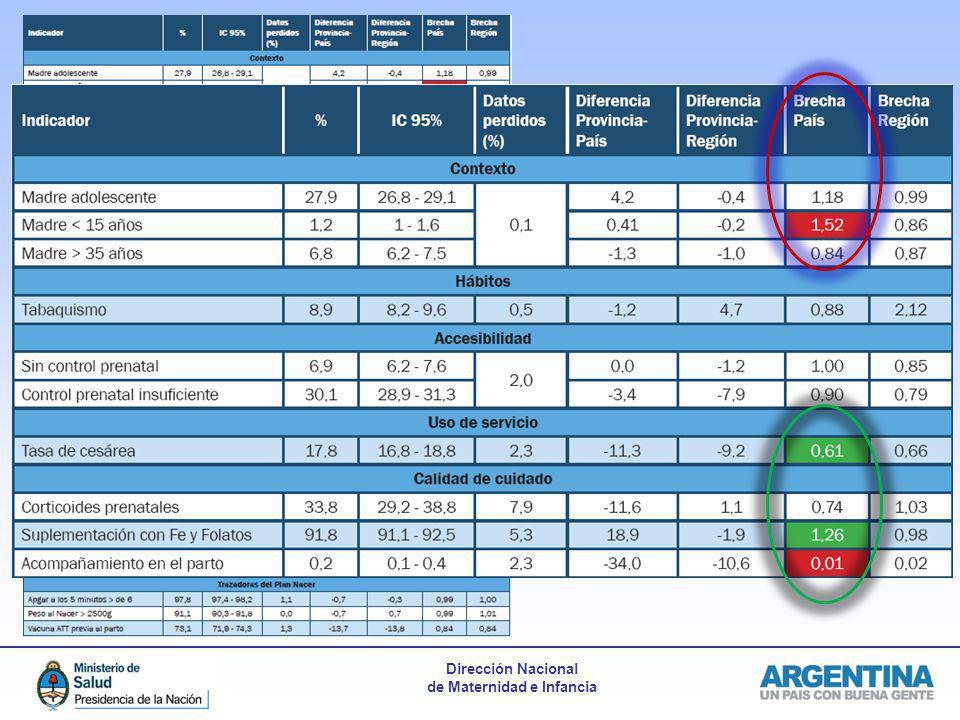 Modelo de informe provincial