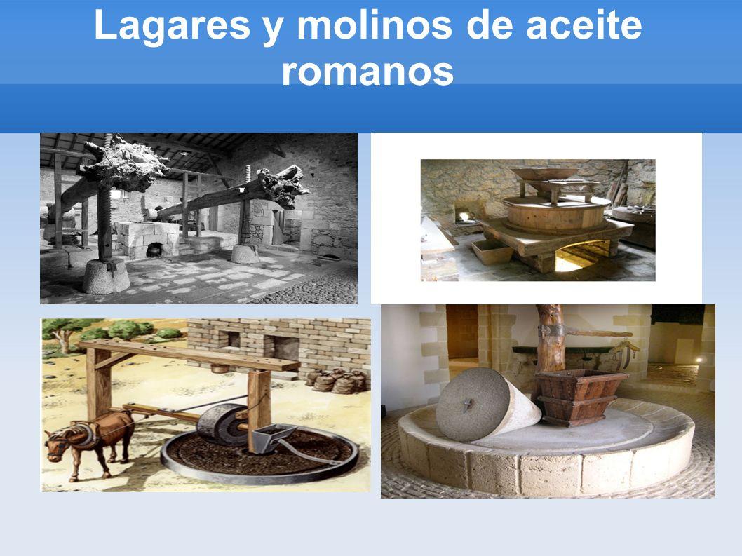 Lagares y molinos de aceite romanos