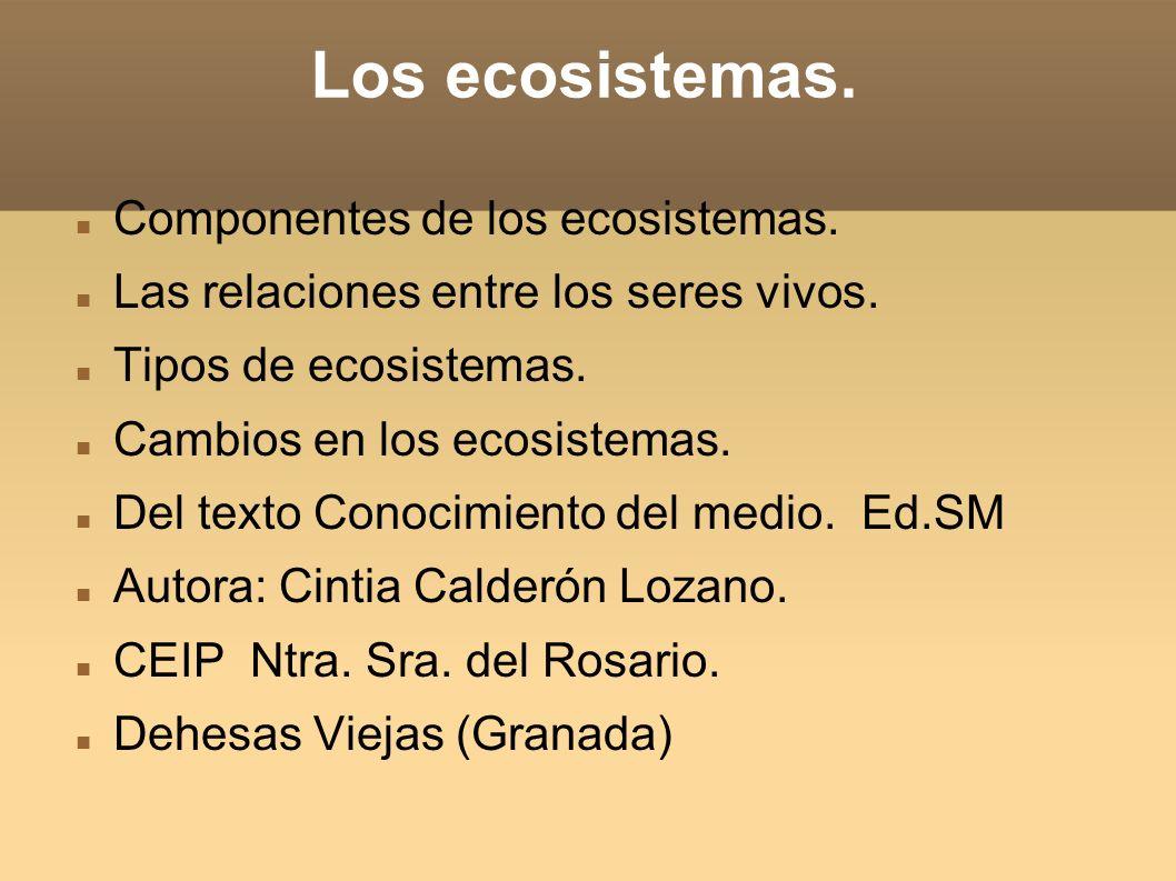 Los ecosistemas. Componentes de los ecosistemas.