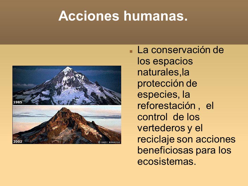 Acciones humanas.