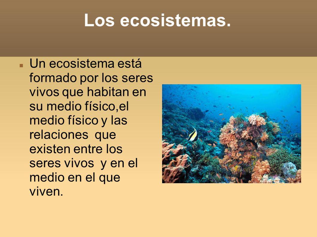 Los ecosistemas.