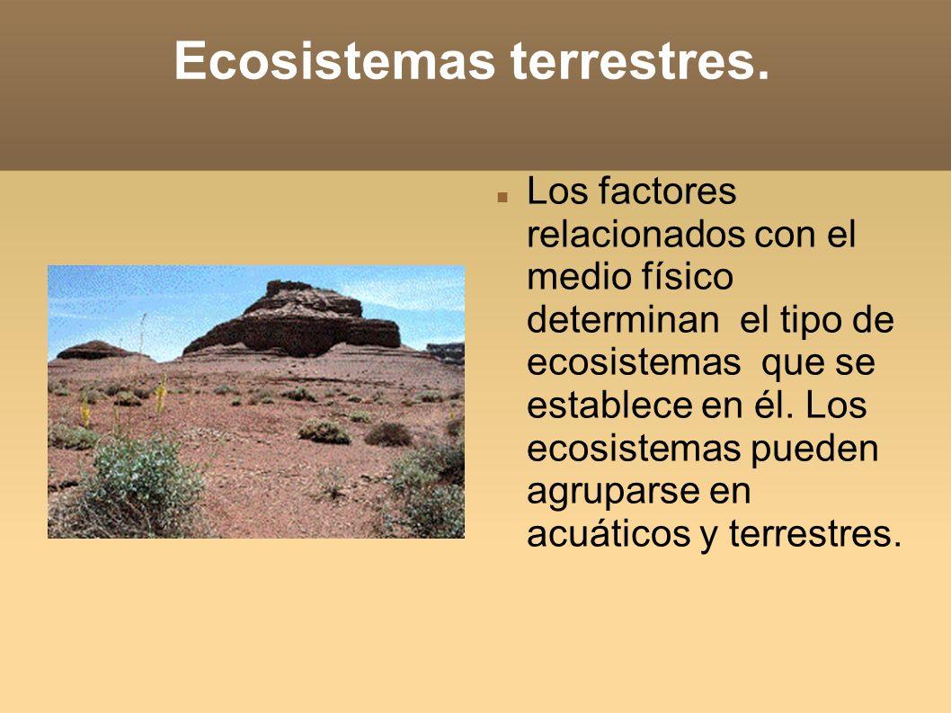 Ecosistemas terrestres.