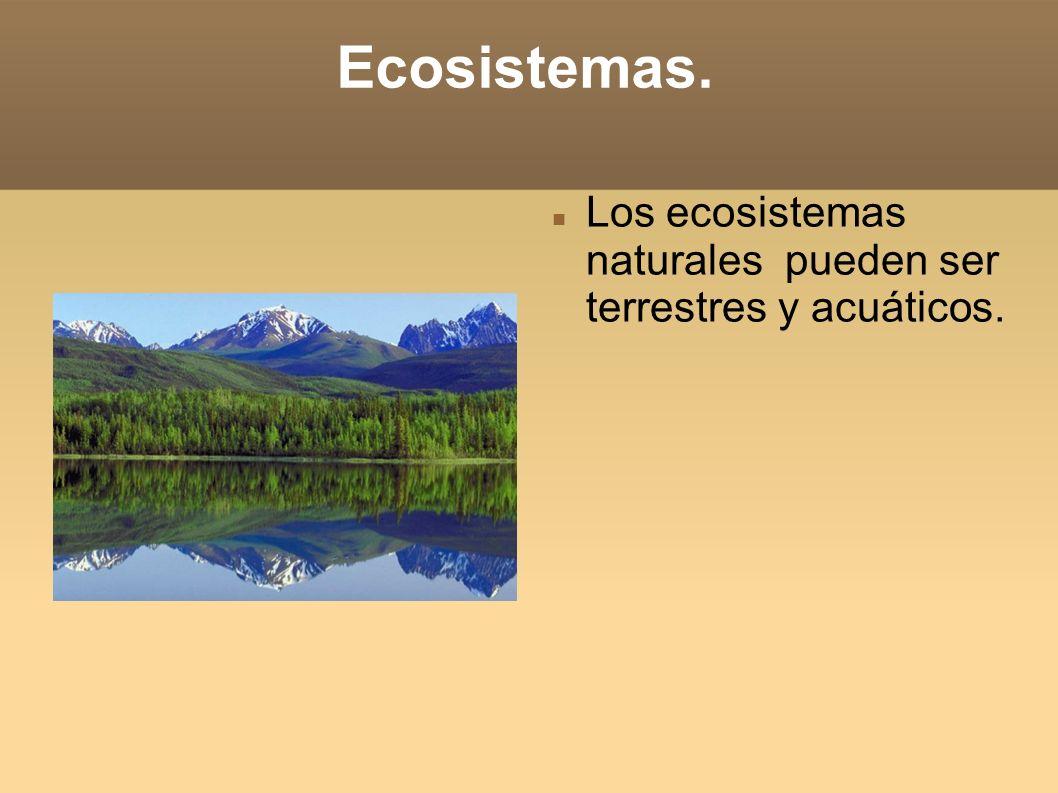 Ecosistemas. Los ecosistemas naturales pueden ser terrestres y acuáticos.