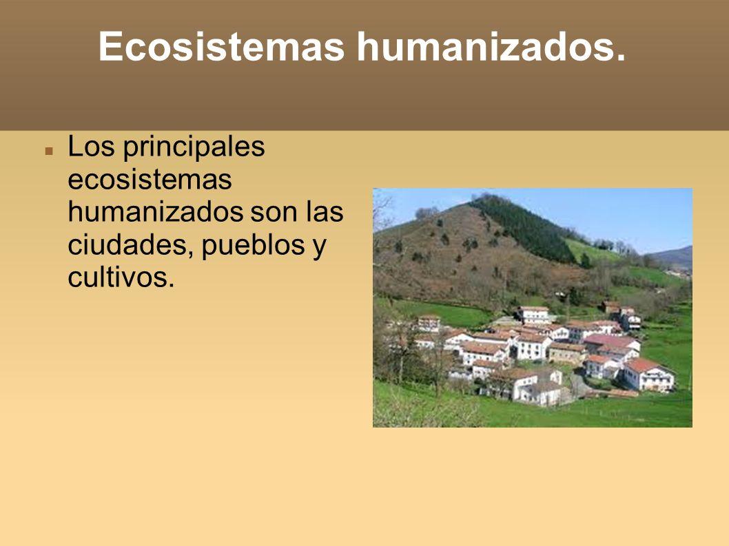 Ecosistemas humanizados.