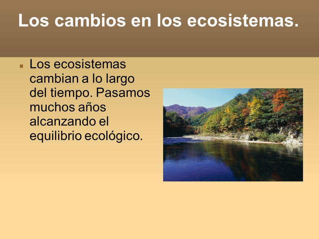 Los cambios en los ecosistemas.