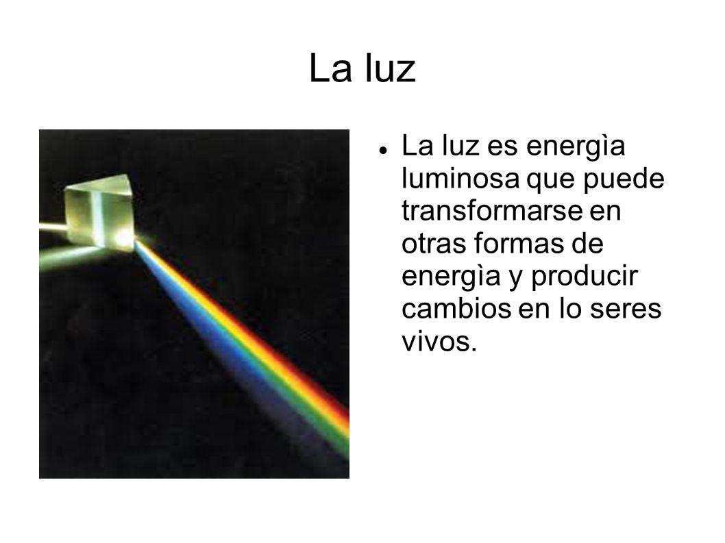 La luz La luz es energìa luminosa que puede transformarse en otras formas de energìa y producir cambios en lo seres vivos.