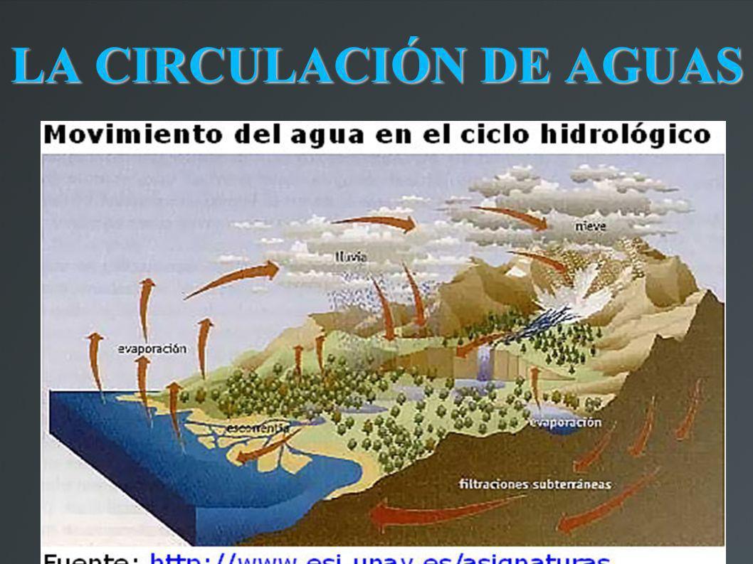 LA CIRCULACIÓN DE AGUAS