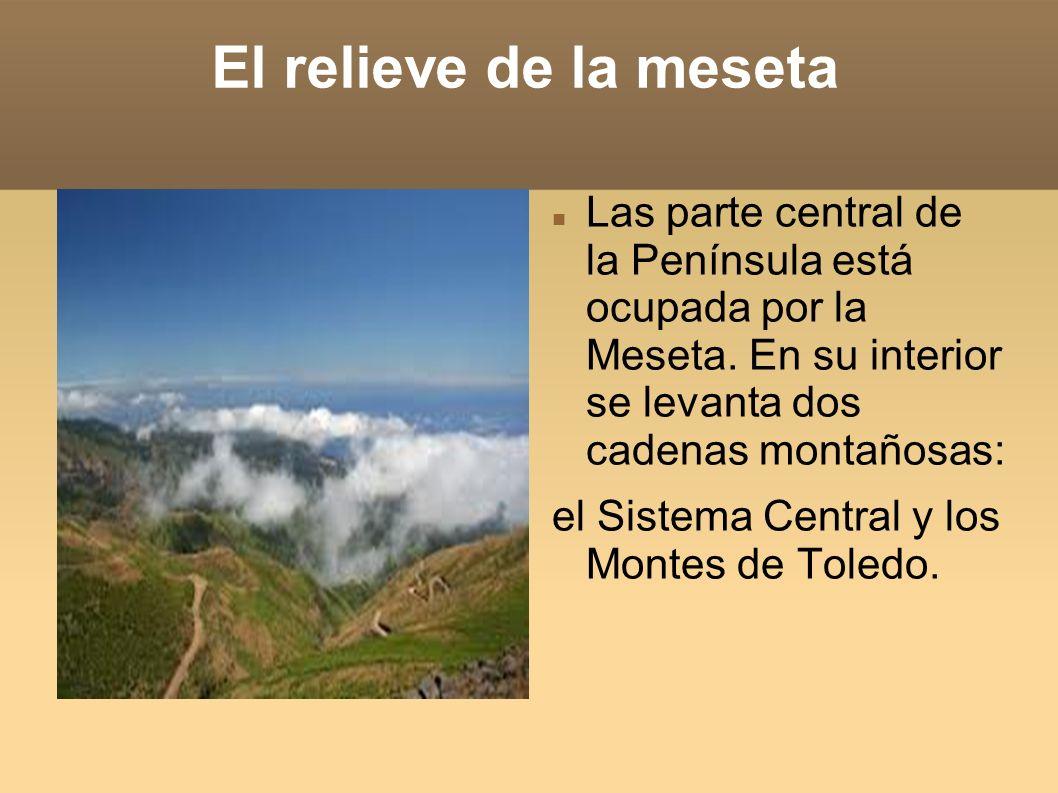El relieve de la mesetaLas parte central de la Península está ocupada por la Meseta. En su interior se levanta dos cadenas montañosas: