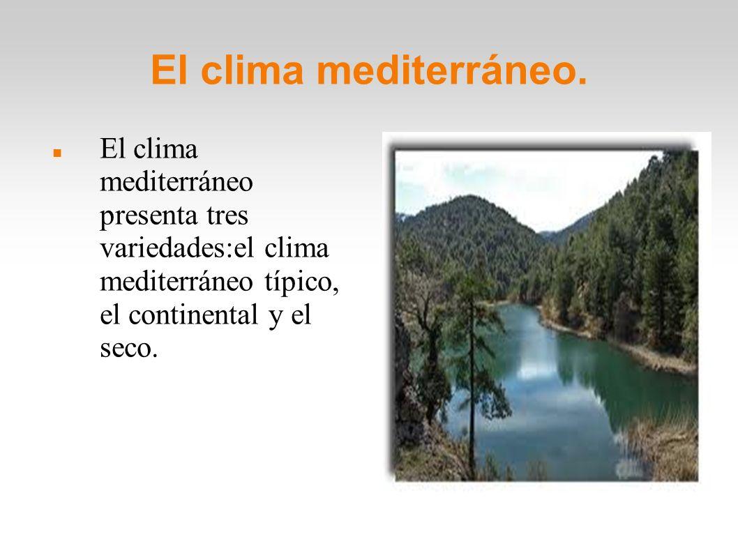 El clima mediterráneo.El clima mediterráneo presenta tres variedades:el clima mediterráneo típico, el continental y el seco.