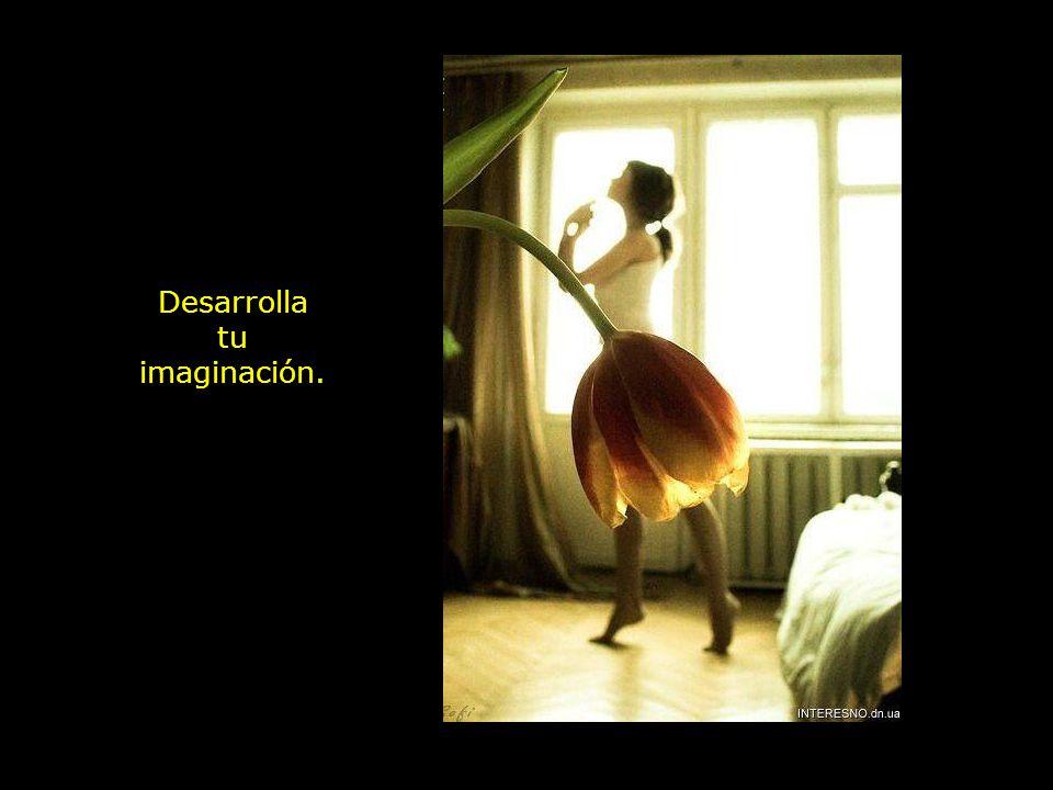 Desarrolla tu imaginación.