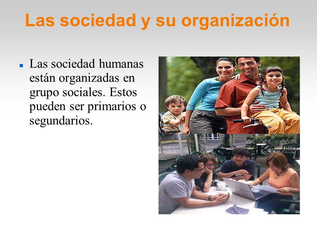 Las sociedad y su organización