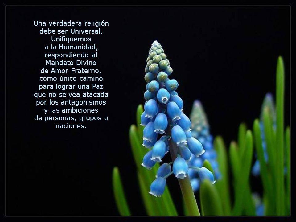 Una verdadera religión debe ser Universal. Unifiquemos
