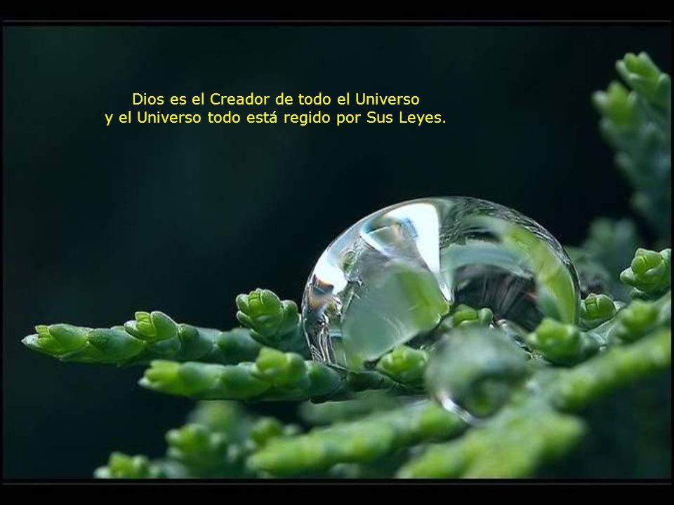 Dios es el Creador de todo el Universo