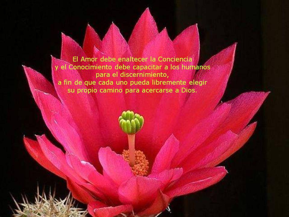 El Amor debe enaltecer la Conciencia