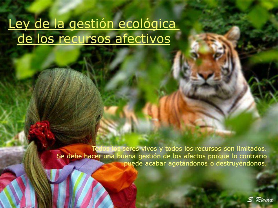 Ley de la gestión ecológica de los recursos afectivos