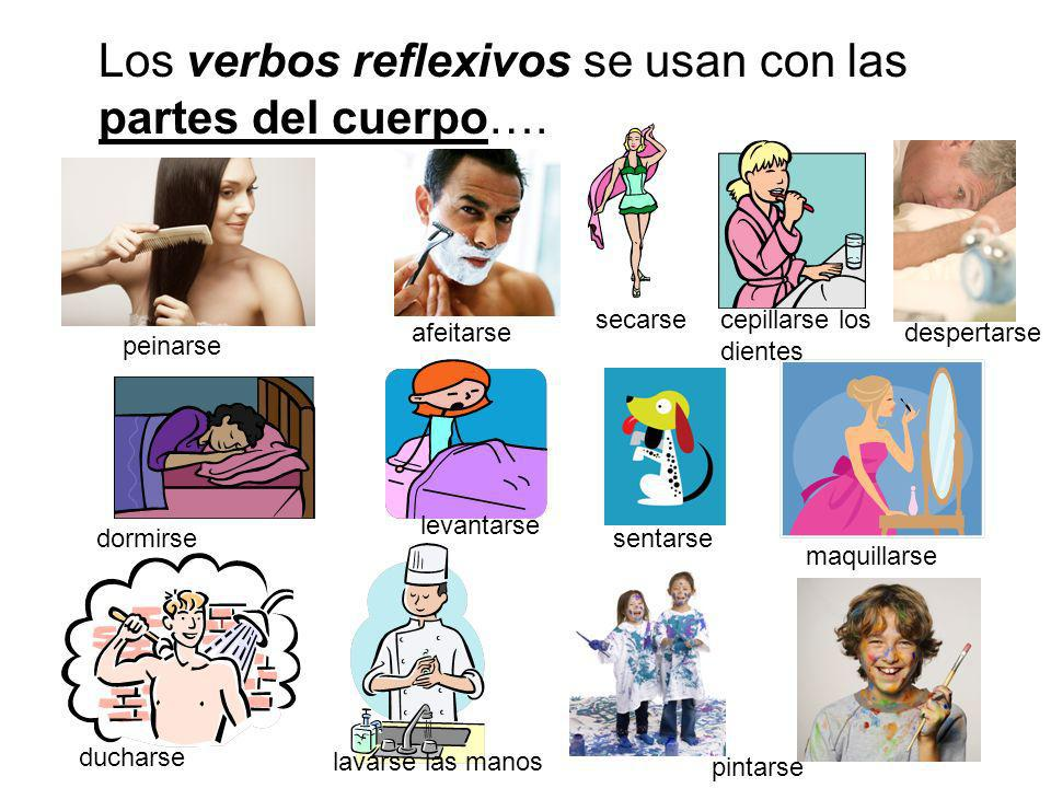 Los verbos reflexivos se usan con las partes del cuerpo….