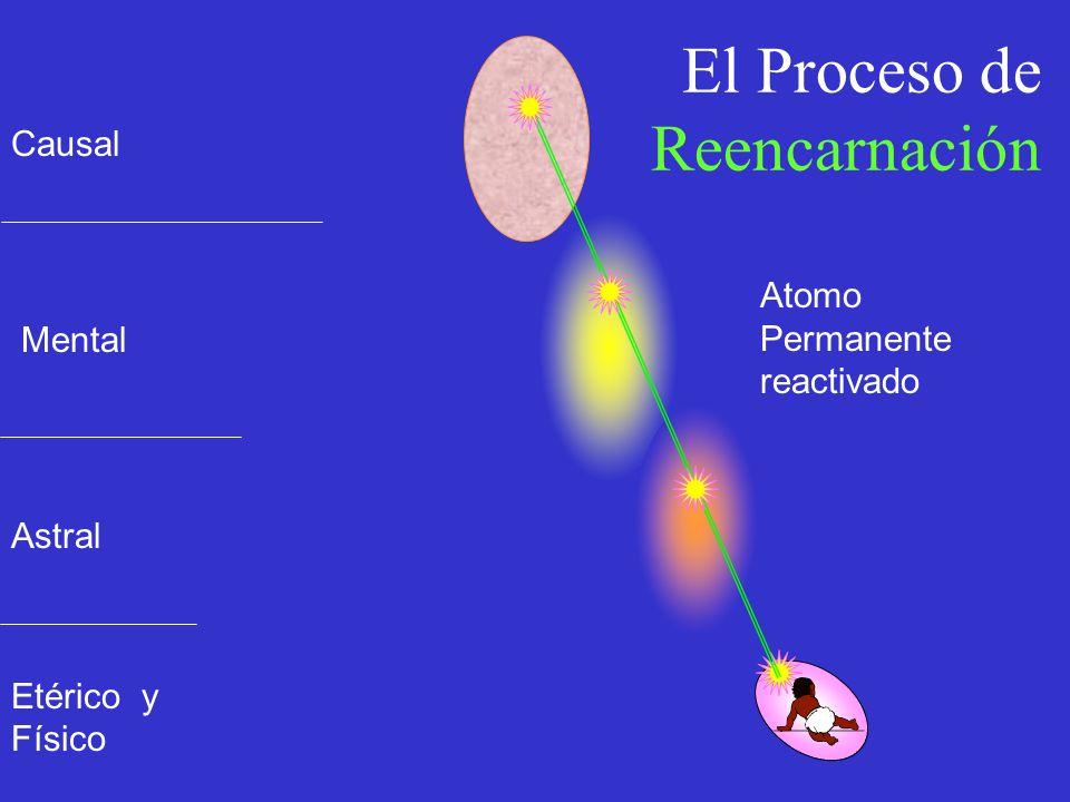 El Proceso de Reencarnación