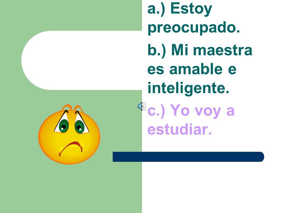 a.) Estoy preocupado. b.) Mi maestra es amable e inteligente. c.) Yo voy a estudiar.