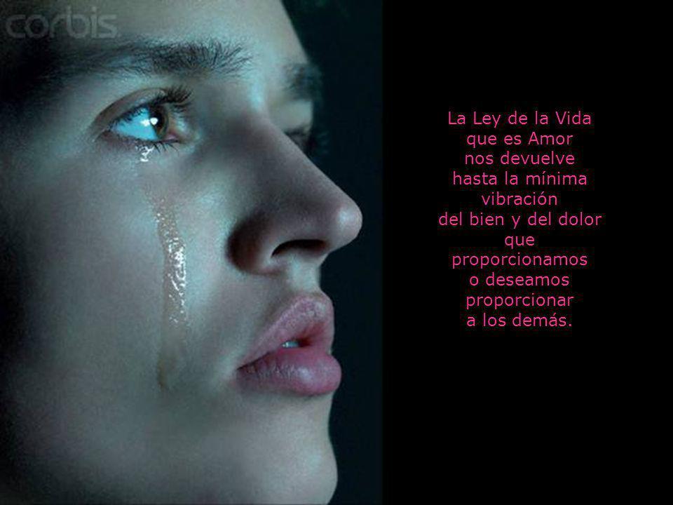 La Ley de la Vida que es Amor nos devuelve hasta la mínima vibración