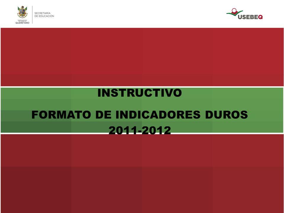 FORMATO DE INDICADORES DUROS