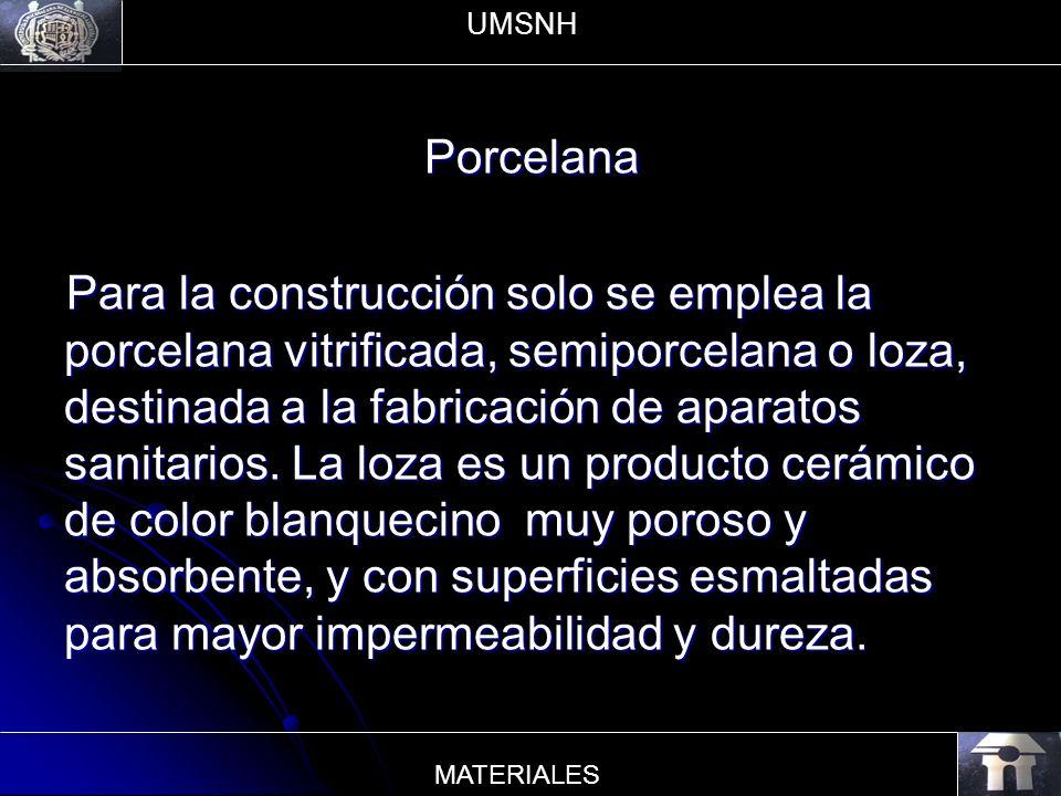 UMSNH Porcelana.