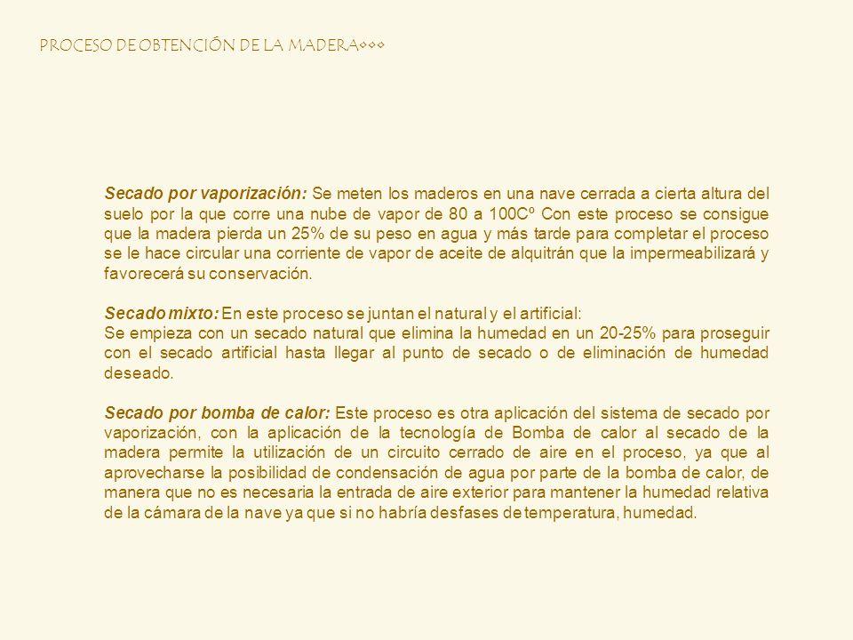 PROCESO DE OBTENCIÓN DE LA MADERA•••