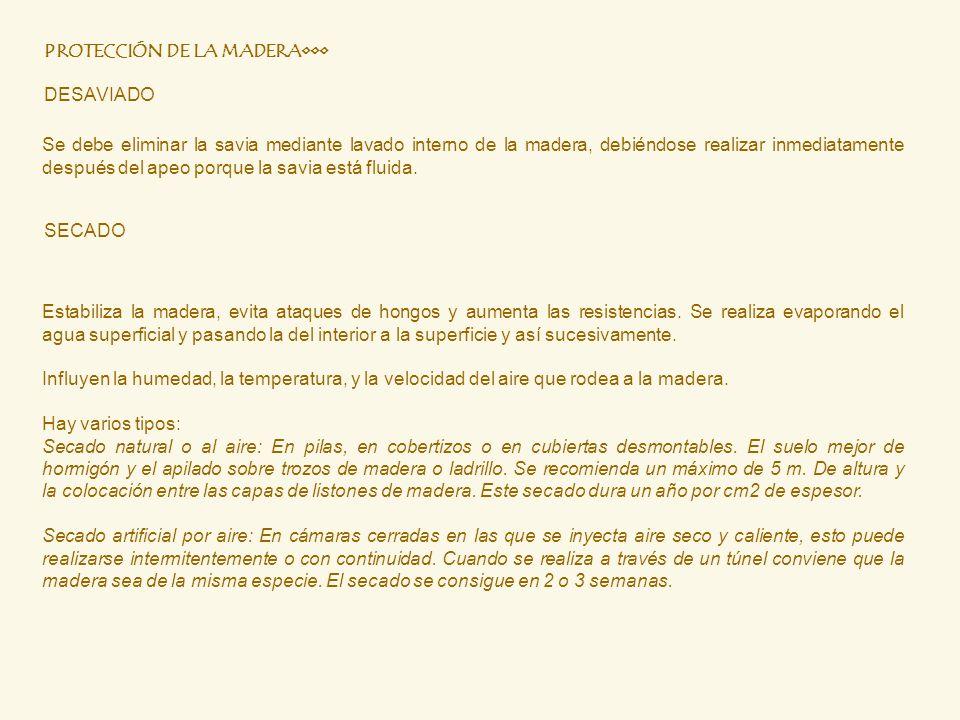 PROTECCIÓN DE LA MADERA•••