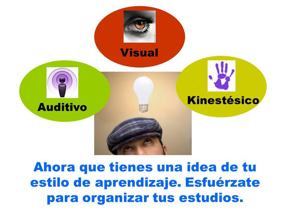 Visual Kinestésico. Auditivo. Ahora que tienes una idea de tu estilo de aprendizaje.