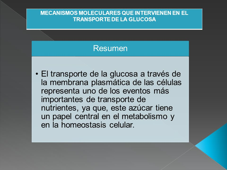 MECANISMOS MOLECULARES QUE INTERVIENEN EN EL TRANSPORTE DE LA GLUCOSA