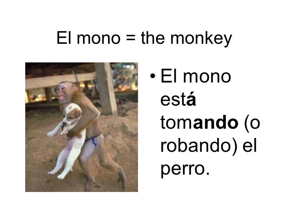 El mono está tomando (o robando) el perro.