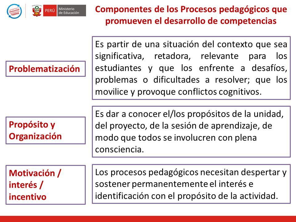 Componentes de los Procesos pedagógicos que promueven el desarrollo de competencias