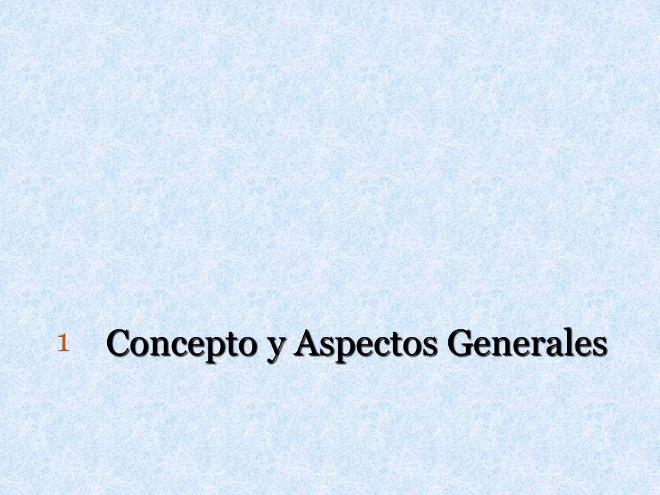 Concepto y Aspectos Generales