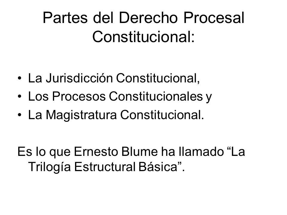 Partes del Derecho Procesal Constitucional: