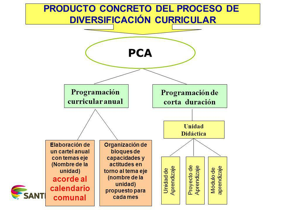 PCA PRODUCTO CONCRETO DEL PROCESO DE DIVERSIFICACIÓN CURRICULAR