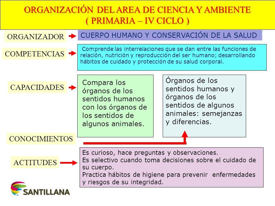 ORGANIZACIÓN DEL AREA DE CIENCIA Y AMBIENTE