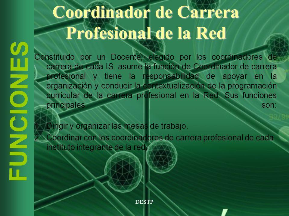 Coordinador de Carrera Profesional de la Red