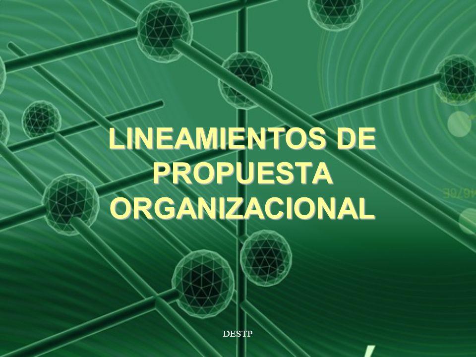 LINEAMIENTOS DE PROPUESTA ORGANIZACIONAL
