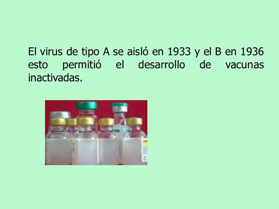El virus de tipo A se aisló en 1933 y el B en 1936 esto permitió el desarrollo de vacunas inactivadas.