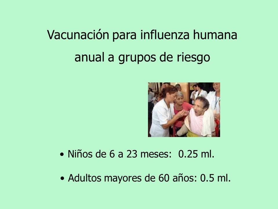 Vacunación para influenza humana anual a grupos de riesgo