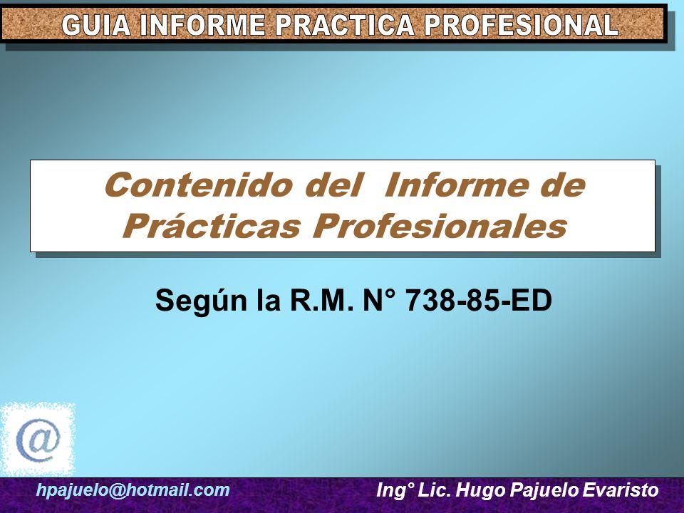 Contenido del Informe de Prácticas Profesionales