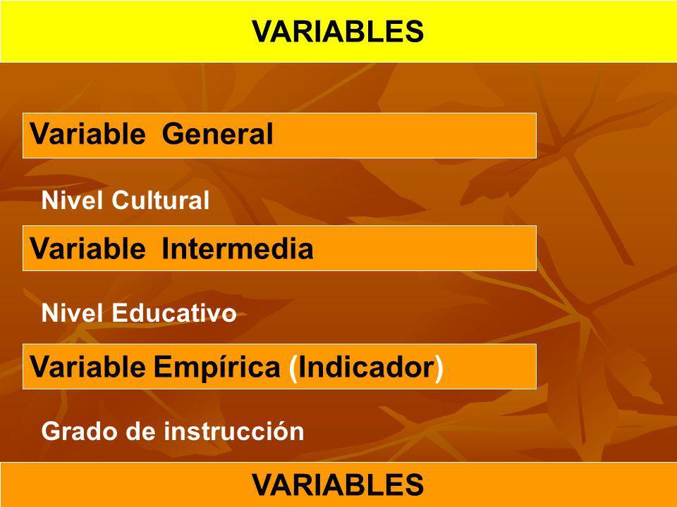 Variable Empírica (Indicador)