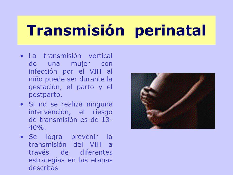 Transmisión perinatal