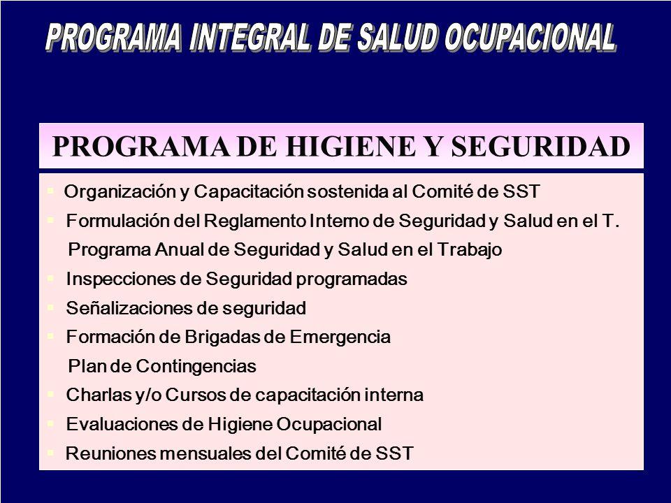 PROGRAMA DE HIGIENE Y SEGURIDAD