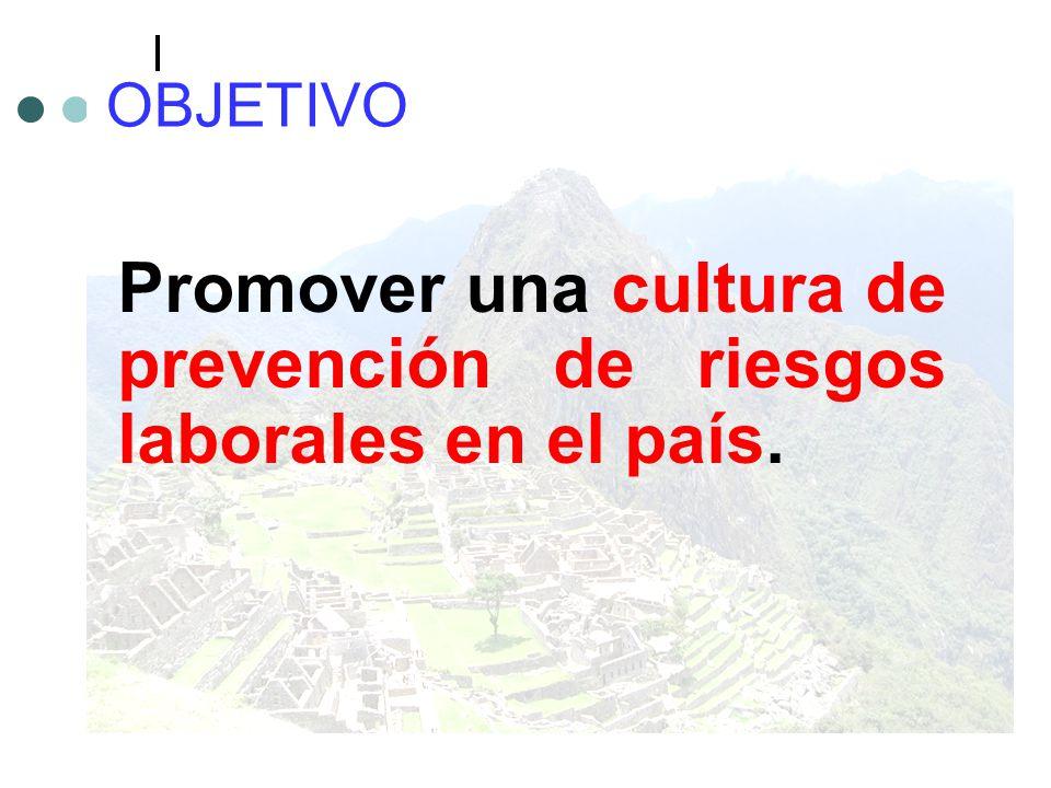 Promover una cultura de prevención de riesgos laborales en el país.